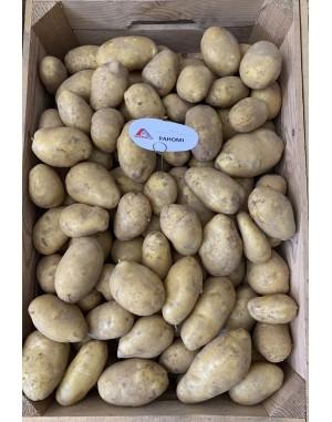 Семенной картофель Раноми, Agrico