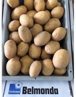 Покупка картофеля