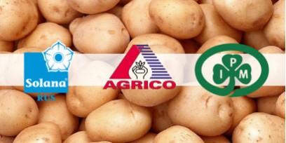 Семенной картофель лучших производителей